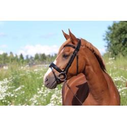 BRIDLE HORSE COMFORT SHINY...