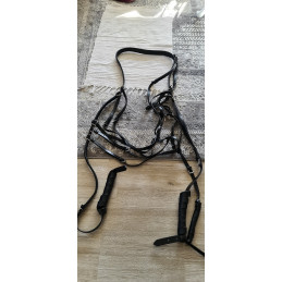 Heavy Tail Harness for...